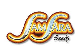 Samsara seeds