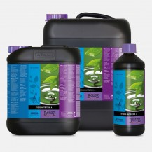 Hydro Booster Universal