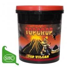 Top Vulcan 4 Kg. (harina de lava)